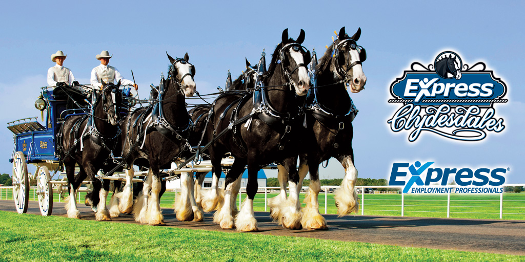 express-clydesdales-image